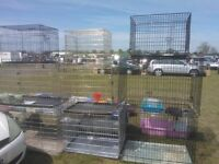 DOG CAGES /NO TEXTING