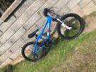 Kids Ridgeback Bike