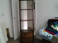 Wooden display cabinet bookcase with 2 storage drawers and 2 shelves