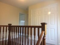 Experienced Painter & Decorator Needed for Immediate Start with Local Cambridge Company