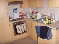 Modern Clean 1 bedroom flat including utility bills.