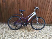 Rayleigh women's mountain bike purple & white