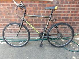 Mens Bicycle + New tyre
