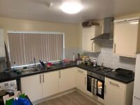 Luxury 1-bed flat to rent