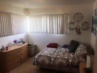Private Bedroom available Close to University College London