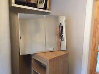 Bathroom cabinet with folding mirror doors