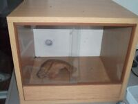 "vivarium wood with glass doors 15""hx18wx15d"