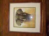 David Shepherd Elephant Print