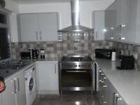 Bespoke Small Kitchen Renovation