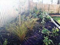 Qualified Gardening & Design - Edinburgh