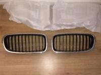 BMW 3 Series F30 kidney grills