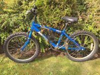 "20"" Boys Raleigh Bike"