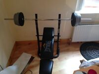 Everlast Weight Bench with bar and weights