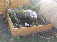 Pre pond container (black)
