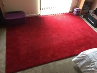 Large Red Rug(nearly new)