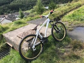 Spank puff custom mountain bike