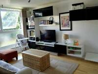Ealing 2BHK + 2 Bathroom + wooden flooring and fully furnished