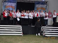 Choir leader needed for established pensioners choir in Reading - no sheet music required. Great pay