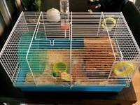 Hamster and cage with accessories