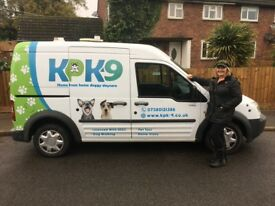 Dog walking - Pet taxi - Doggy daycare