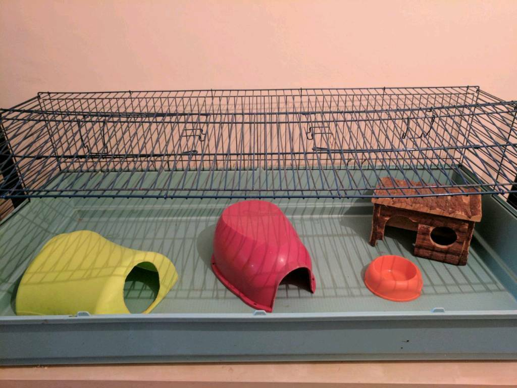 6ft Guinea Pig cage