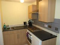 Seaside Studio Flat on Oriental Place - Students and Professionals Welcome!
