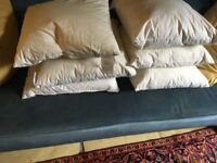6 JOHN LEWIS Duck Feather Cushion Pads