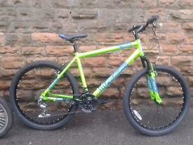 NEW Falcon Merlin Mens Alloy HT Mountain Bike Green - RRP £279