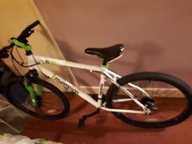 Redemption Beartrap 650 Mountain Bike