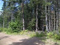 Camp lot for sale close to Sussex, NB