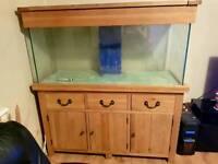 maidenhead aquatics aquaoak aquarium
