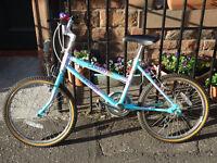 Raleigh Camaro Kids Bike