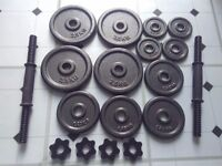 PRO FiTNESS solid cast iron dumbells