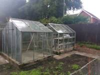 Two glass and aluminium greenhouses