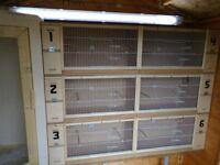 Breeding nest boxes