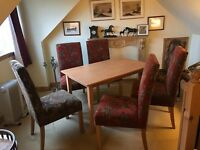 Lyon Grand Red & Green Dining Chairs with Table
