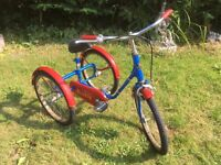 PASHLEY PICKLE 3 WHEEL BIKE TRICYCLE JUST SERVICED KIDS