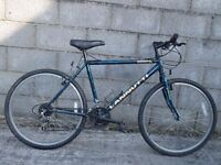 mens bike 26''lanutti