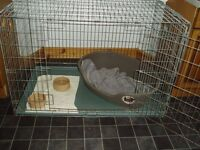 indoor kennel and dog crate