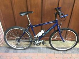 Emmelle Panther small men's mountain bike