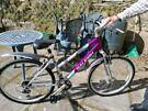 Mantis Raleigh bike