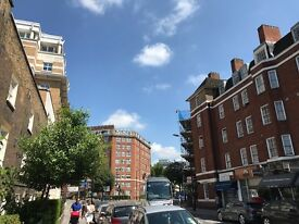 Refurbished and furnished one bedroom flat TO LET. Victoria, Sloane Square, Pimlico