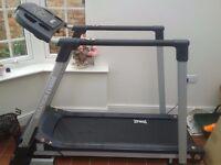 Everlast Marathon EV8000 Treadmill