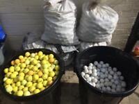 4000 range balls yellow and white