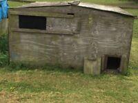 poultry / pheasant hut