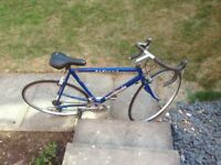 Barracuda used Road Bike for sale