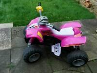 Big pink quad 12v battery & charger