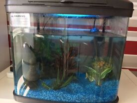 Tropical fish tank- great condition.