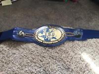 EbU boxing title championship belt