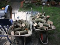 Freshly cut logs meadem size 2 ton builders bags full